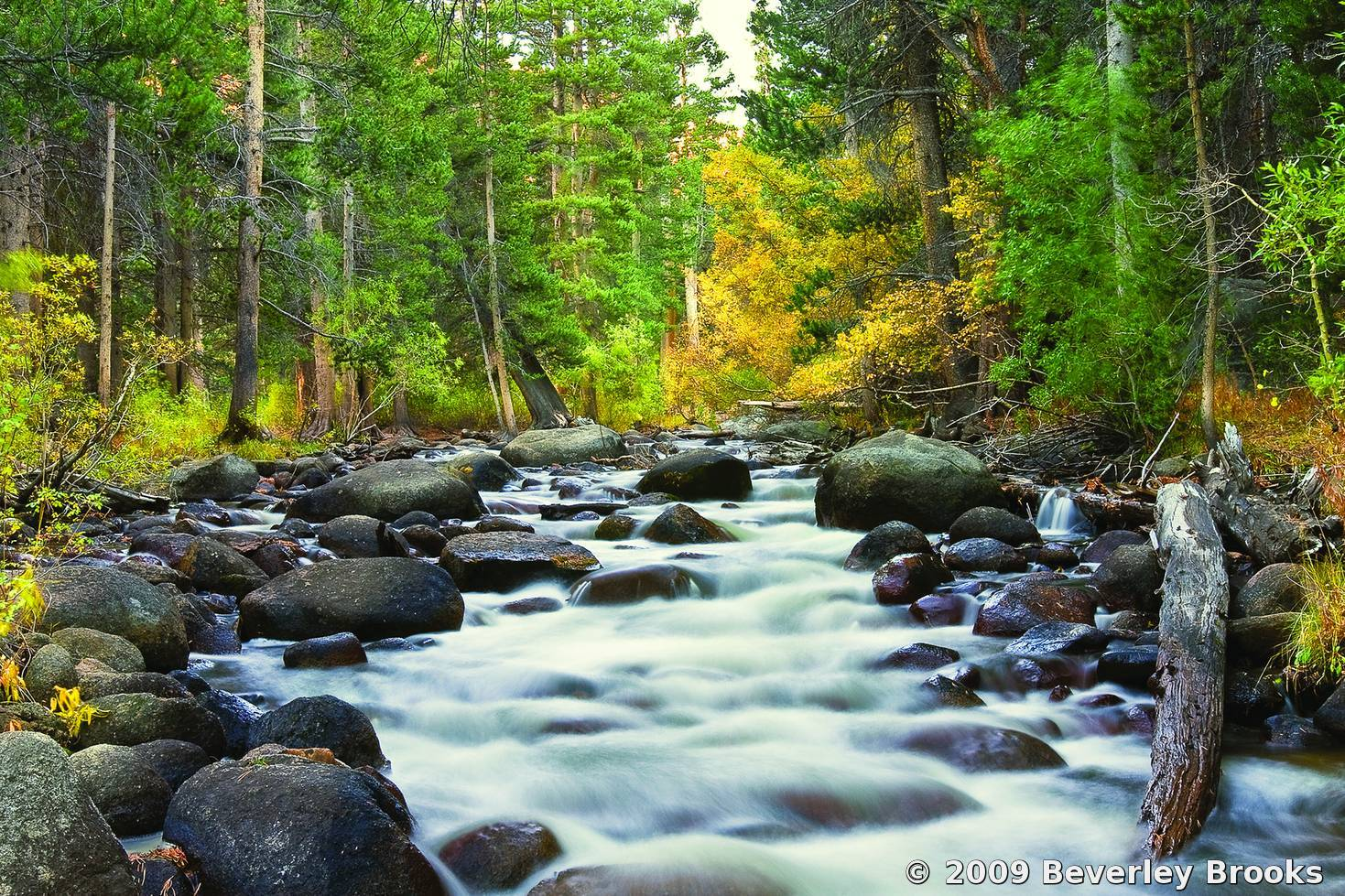 stream in the mountains - photo #22